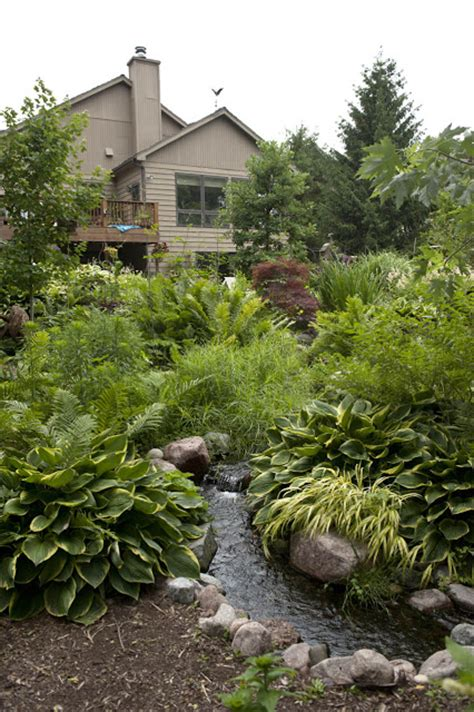 backyard ecosystem aquascape your landscape designing your dream pond