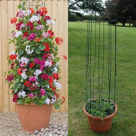 planting  large containers frame hanging baskets