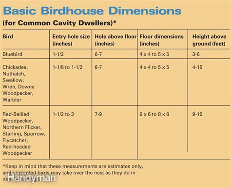 woodworking birdhouse overview materials tools and design