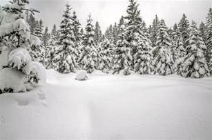 snow images snow backgrounds pictures wallpaper cave