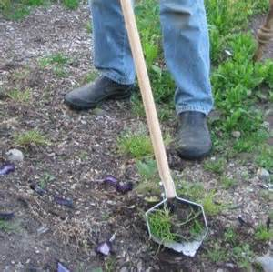 best tools for weeding garden images