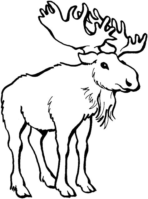 Free Wild Game Cliparts, Download Free Clip Art, Free Clip
