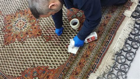 Bury St Edmunds Carpet Care Professional Rug Cleaning In Rug Care