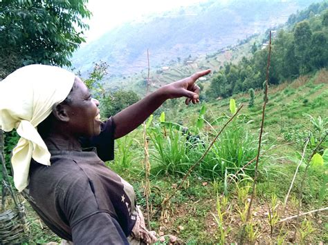 kredit mit 4 kindern ruanda mit kuh und kredit sos kinderd 246 rfer weltweit