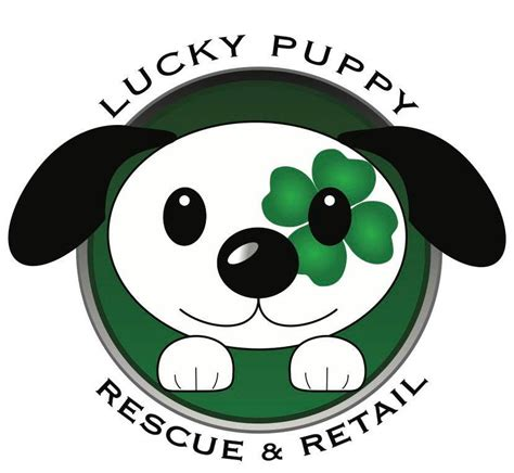 lucky rescue lucky puppy rescue retail studio city los angeles