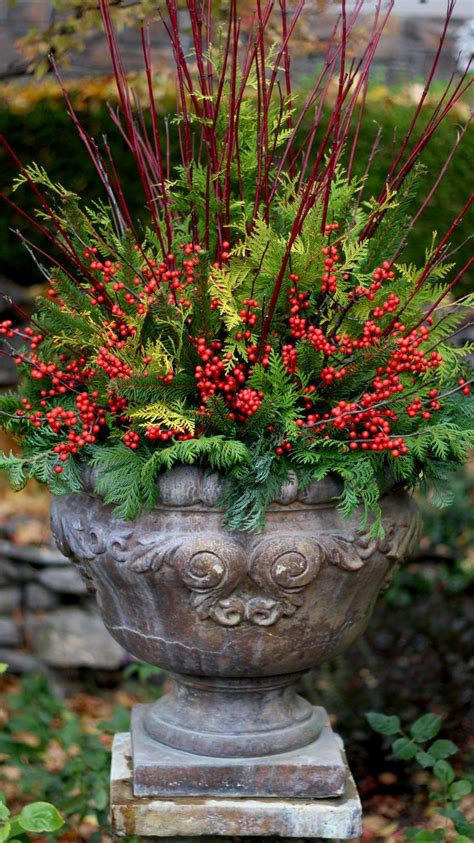 outdoor winter planter ideas 25 best ideas about outdoor planters on planters