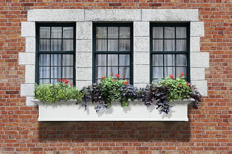 planter box window window planter boxes casual cottage