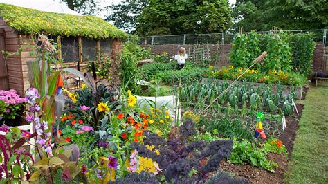 Design Your Own Kitchen Layout Free Growing Your Own Gardening Advice And Tips From The Rhs