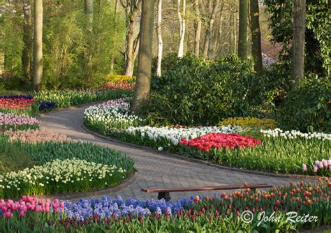 spring gardens john reiter photography gardens of holland a spring