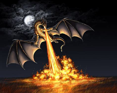 Dragons Images Attack Hd Wallpaper by Free Wallpaper Hd Computer Wallpaper Free