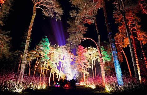 westonbirt arboretum enchanted christmas rebecca clark
