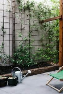 Vertical Garden On Fence 25 Best Ideas About Vertical Garden Wall On