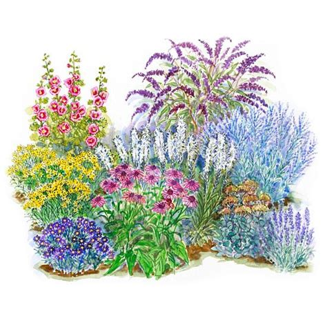 Flower Garden Plans Layout Garden Plans For Birds Butterflies Gardens Beautiful And Birds