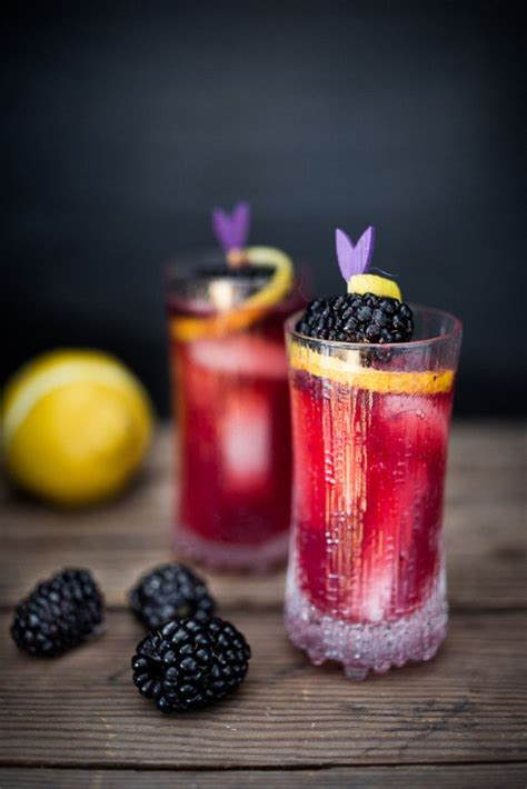 raspberry lime gin smash sugar spice and glitter 37 best images about bramble cocktail on cocktail shaker puree and cocktails