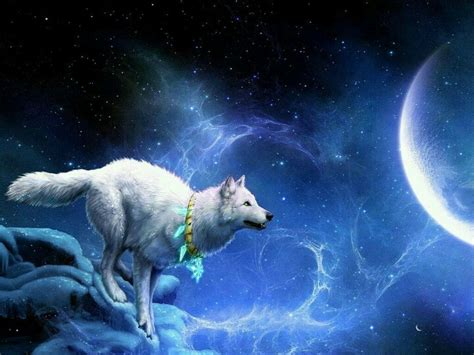 native american wolf spirit pinterest discover and save creative ideas