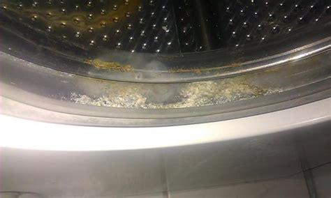 Wäsche Riecht Muffig Was Tun by Waschmaschine W 228 Sche Stinkt M 246 Bel Design Idee F 252 R Sie