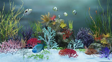 hd aquarium backgrounds pixelstalknet