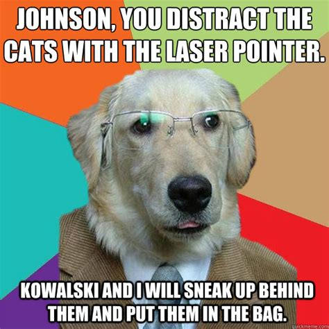 Laser Pointer Meme - business dog memes quickmeme