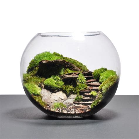 Handmade Terrarium - terrarium ideas search stuff for room