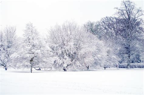 picture of snow snowy landscape 2 free stock photo public domain pictures