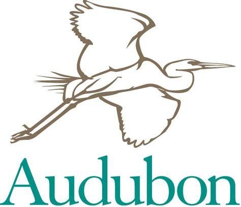 envirohistorytimeline 1905 audobon society founding of