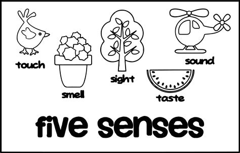 5 Senses Coloring Pages Ktrdecor Com Five Senses Coloring Page