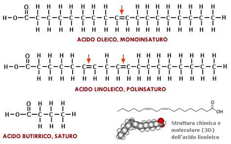 acido linoleico alimenti grassi polinsaturi
