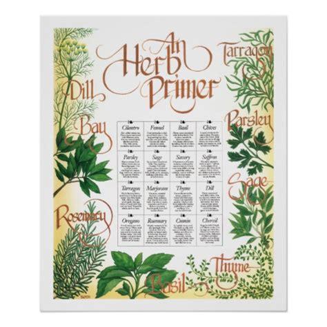 free printable herb poster herb primer poster print zazzle