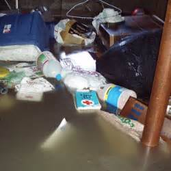 how to get smell out of flooded basement home