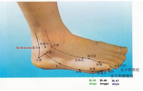dolore sotto al ginocchio parte interna shu antichi piede e caviglia