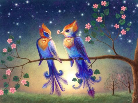 beautiful images of love beautiful love birds wallpapers funny animal
