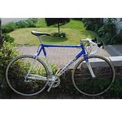 1998 Peugeot Richard Virenque Team Festina Replica