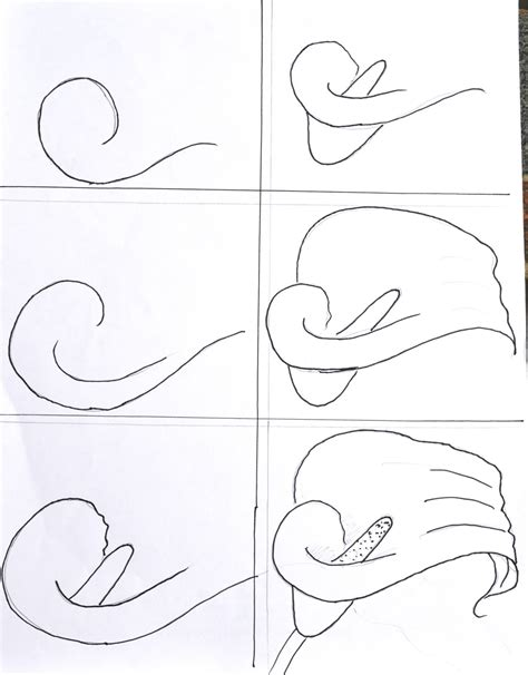 doodle drawing lessons 1000 images about draw flowers on drawing