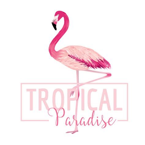 watercolor flamingos pattern vector free download watercolor flamingo vector background 01 free download
