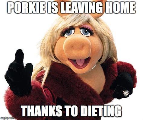 Miss Piggy Meme - miss piggy imgflip