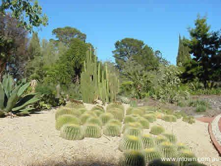 Geelong Botanical Gardens Geelong Botanical Gardens Photo Gallery Intown Geelong