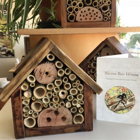 carpenter bee house how to attract bees to your garden with a biome bee
