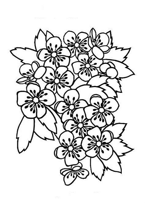 disegni di fiori da stare e colorare disegni di fiori da stare disegni da colorare tema fiori
