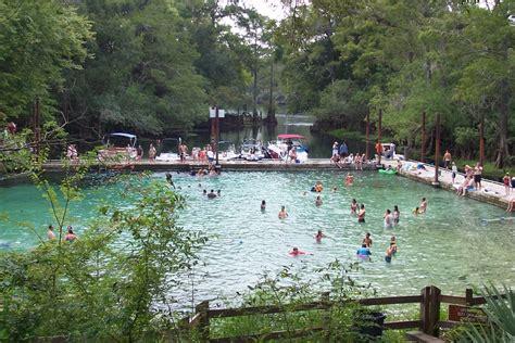 fanning springs state park florida springs fanning springs state park levy county