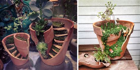 vasi strani diy gardens made from broken pots