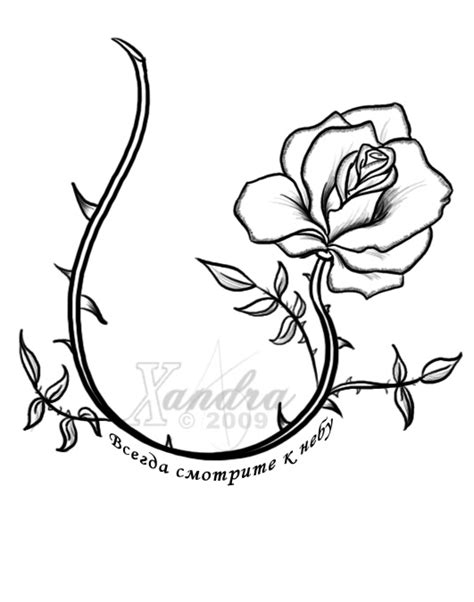 vine with roses tattoo designs vine vine pencil and in color vine
