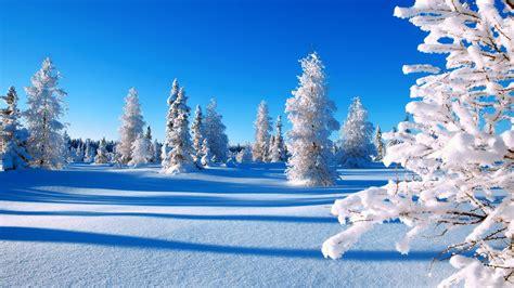imagenes de invierno bellas banco de im 193 genes los paisajes m 225 s hermosos del mundo