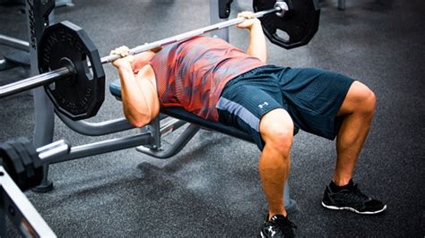bench press images scientific recommendations for strength and hypertrophy