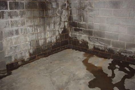 basement waterproofing in alpharetta ga basement