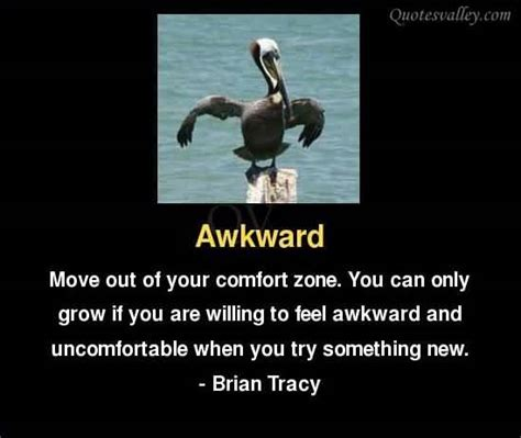 move out of your comfort moving out quotes quotesgram