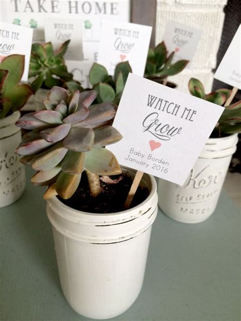 Baby Shower Giveaway Tags - best 25 succulent party favors ideas on pinterest succulent favors succulent