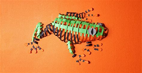 How To Make A 3d Frog Out Of Paper - paper loops on behance