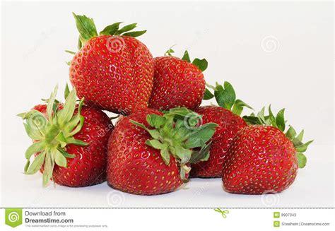 strawberries in season stock photos image 8907343