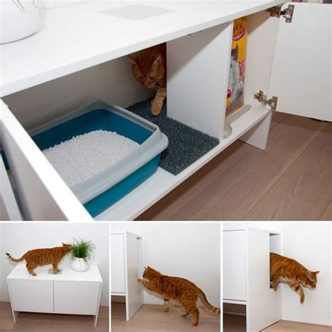 litter box in bedroom 25 best ideas about litter box smell on pinterest