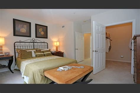 cheap 1 bedroom apartments in wesley chapel the columns at cypress point apartments wesley chapel fl